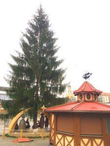 583. Striezelmarktbaum Dresden auf dem Markt Aufbau